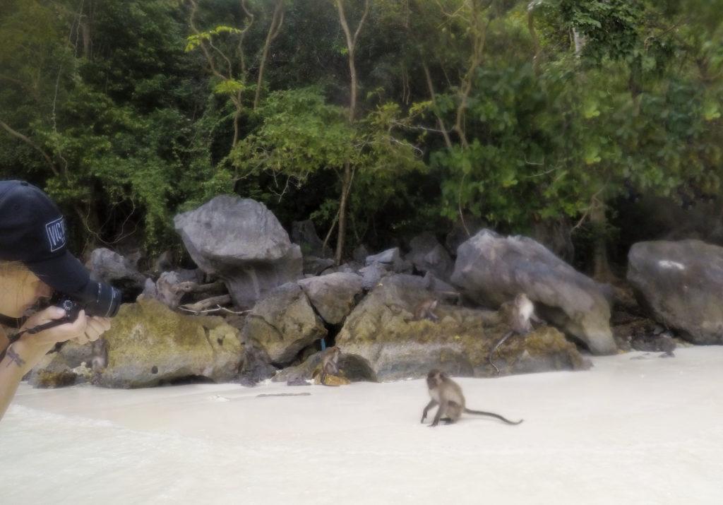 Monkey Beach Ko Phi Phi